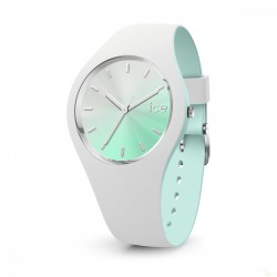 Relógio Ice Watch Chic WBB